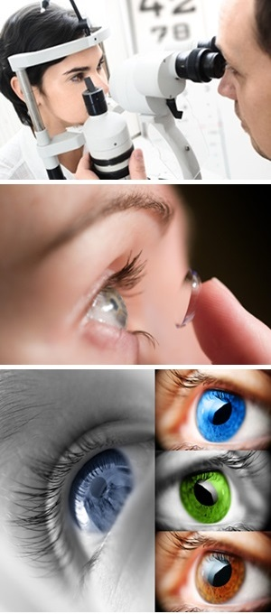 Central Coast Optometrists